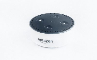Alexa. Stop listening to my client calls.