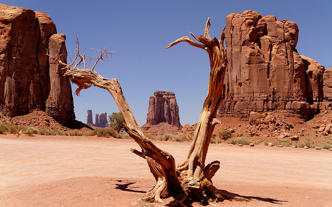 The Online Wild West & the Virtual Villains That Roam It
